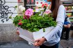 milano-il-mercato-dei-fiori-L-J5hlPy