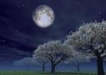 luna-e-piante
