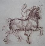 cavallo leonardo
