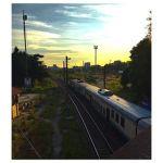 solitario treno