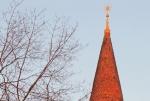 stella campanile