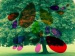 Luca albero